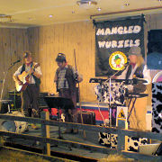 The Mangledwurzels on the specially constructed and suitably rural stage at Weston Rugby Club (2 Dec 2006).