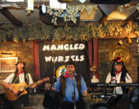 The Mangledwurzels in action at the Somerset Wagon, Chilcompton (29/6/8)