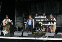 The Mangledwurzels on stage at the Watchett Festival (23 Aug 2008)