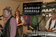 The Manglewurzels at The Kings Head, Coleford (25th March 2017)